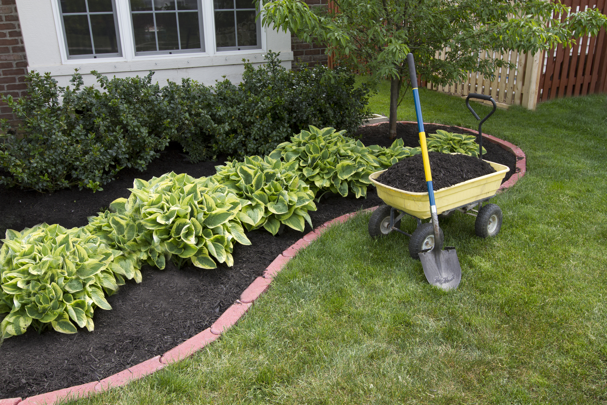 Read Our Mulch Tips By Mccarty Mulch And Landscaping