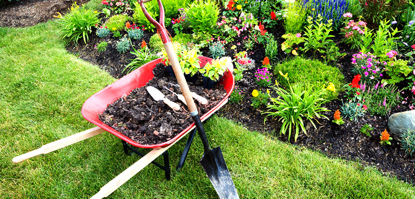 Best Flower Bed Mulches